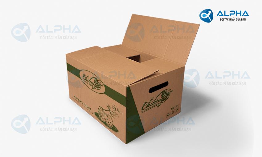 Mẫu thiết kế hộp carton