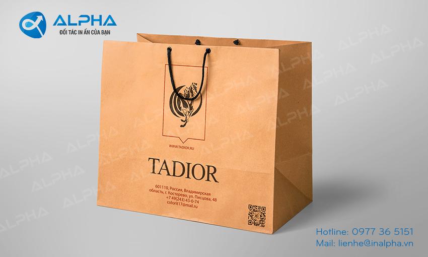 Mẫu thiết kế Túi TADIOR